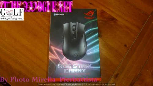 asus carry strix rog  mouse